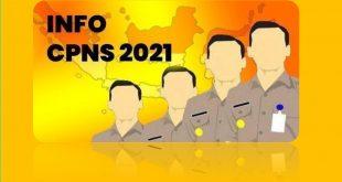 PENDAFTARAN CPNS 2021 online