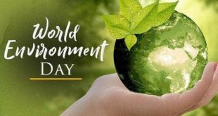 twibbonize Hari Lingkungan Hidup Sedunia 2021